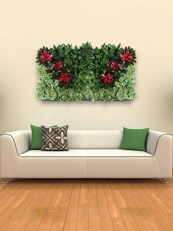 Levende plantenwanden